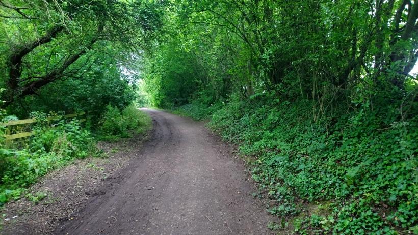 Gypsy Lane 2. Image credit Nic Wilson